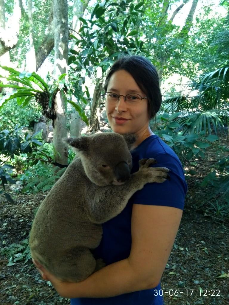 Gegen Bezahlung kann man hier einen Koala halten.